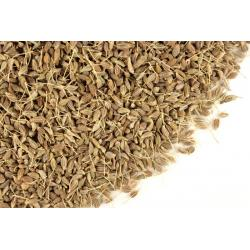 Anise Seed - 16 oz