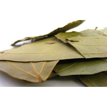 Bay Leaf, Indian