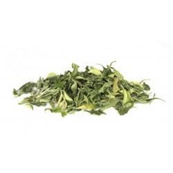 Stevia Leaves, Organic